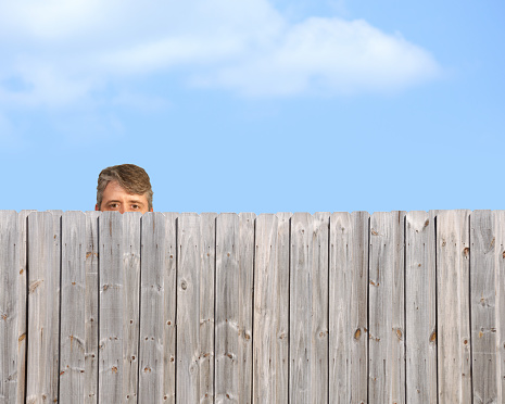 peeping-neighbor